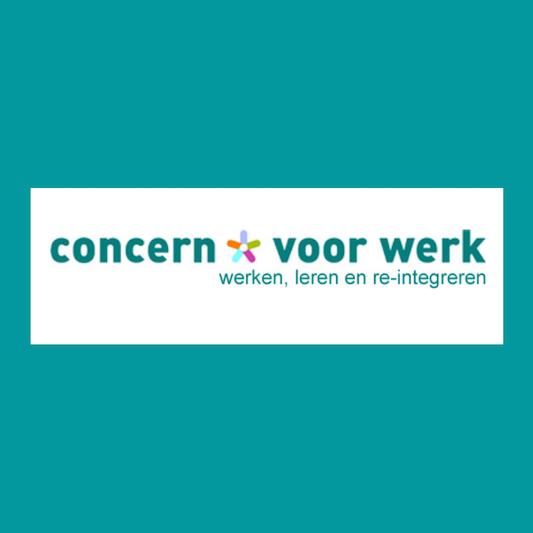 Peter van der Mee, Manager middelen bij Concern voor Werk